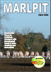 Marlpit 2013 March